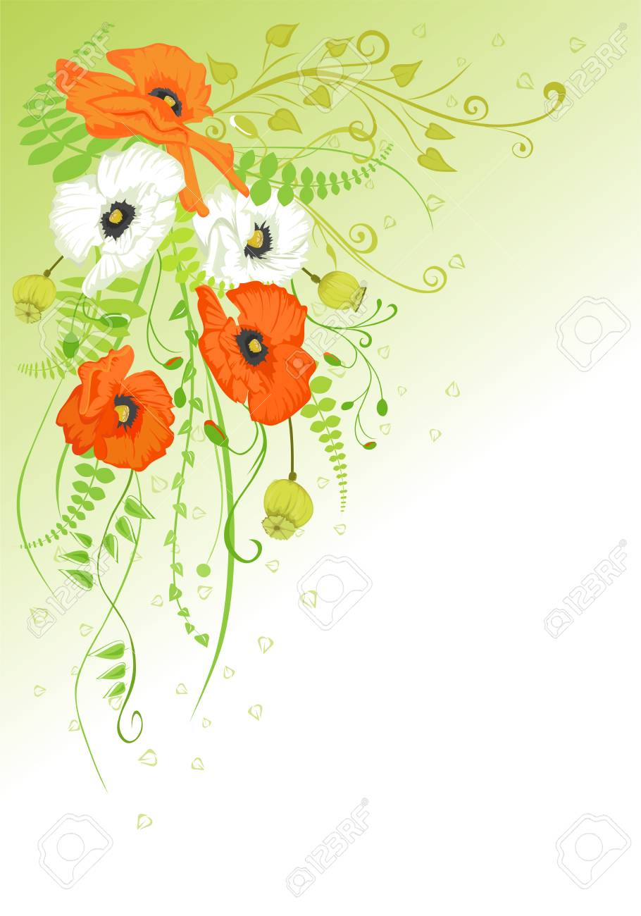 Abstract background with white and orange poppies. Stock Vector - 4629227