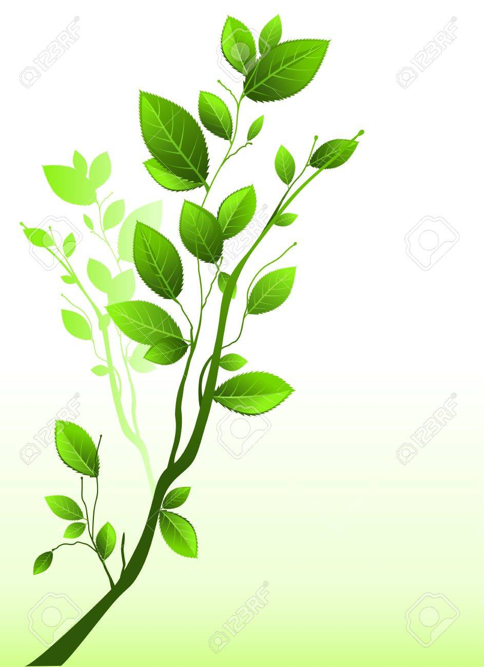 Green branch Stock Vector - 9267177