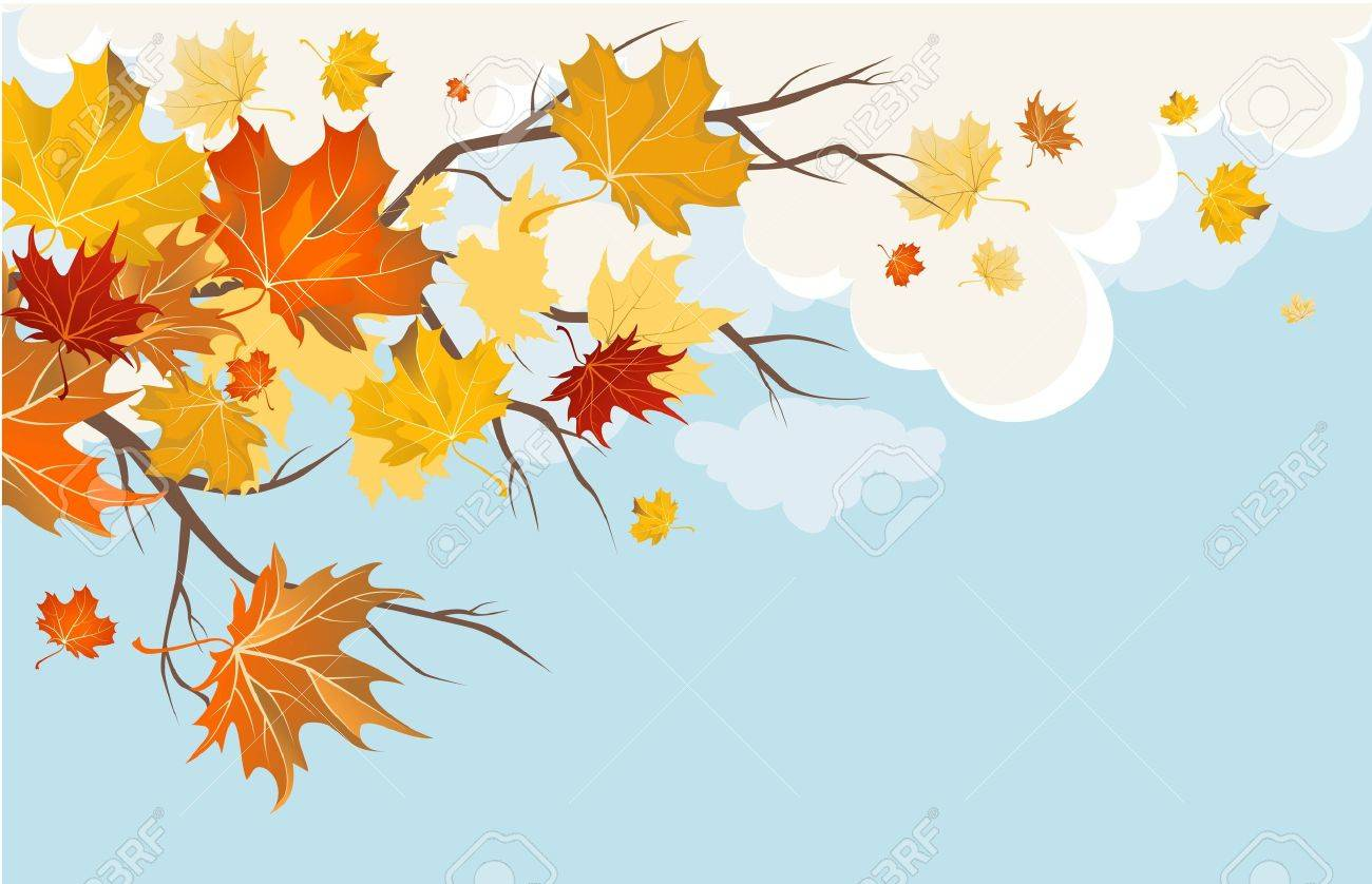 Autumn leaves Stock Vector - 9813472