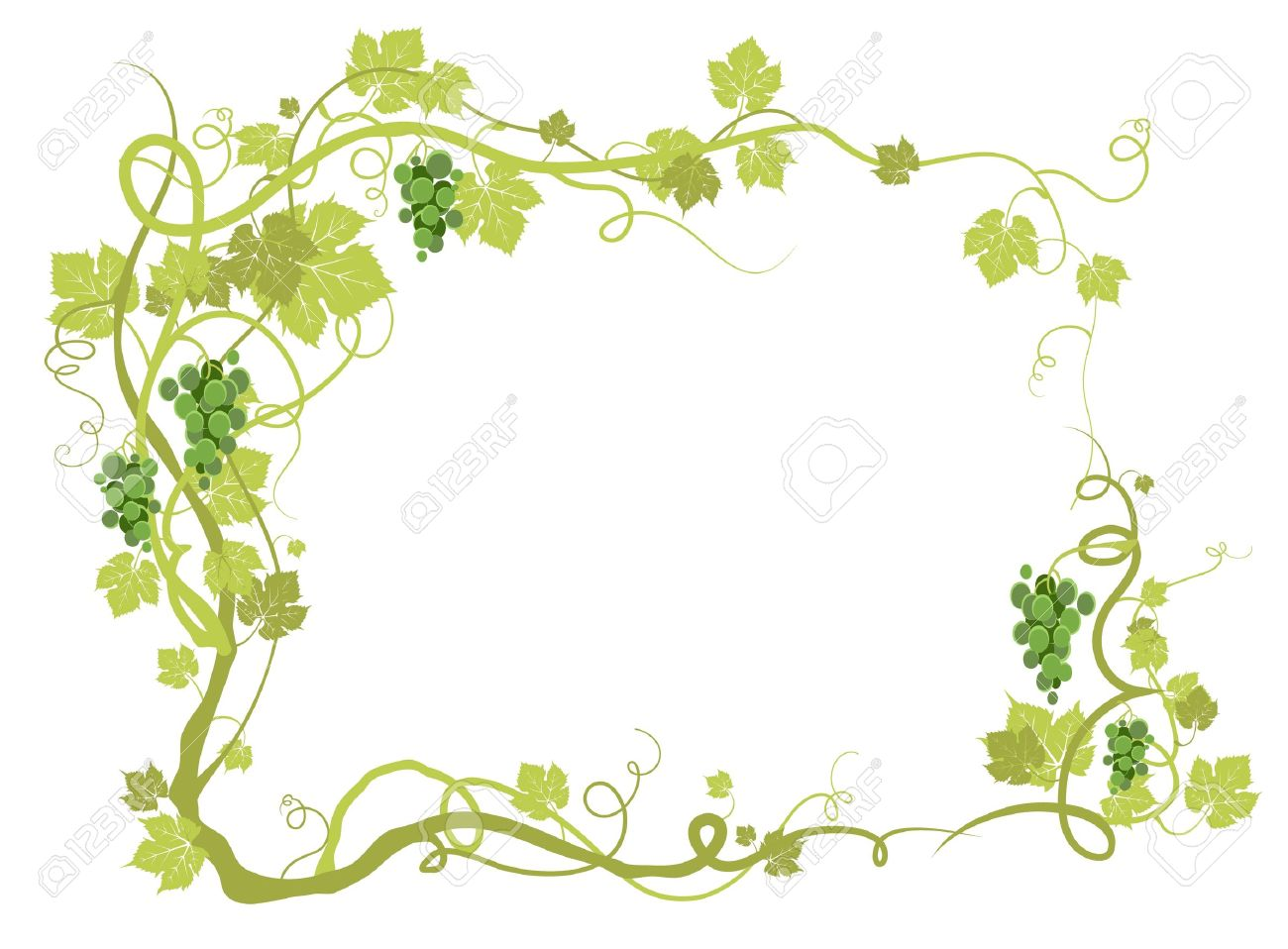 Green vineyard frame with space for text Stock Vector - 10585574