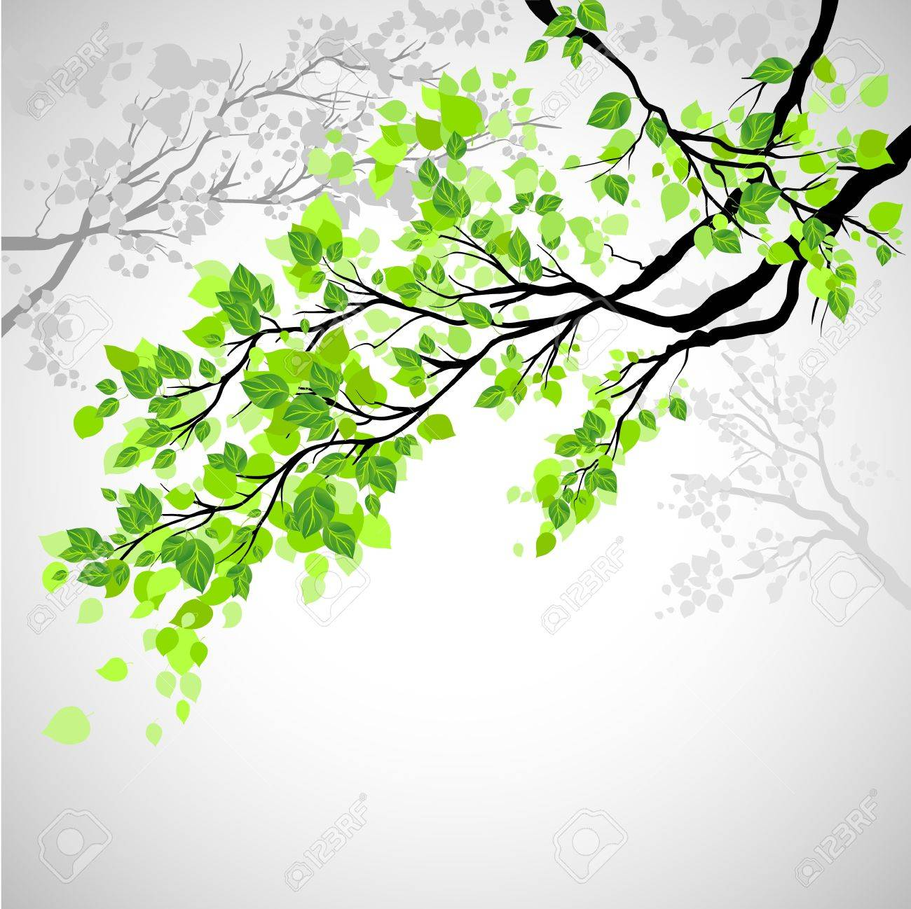 Branch with leaves Stock Vector - 20544629