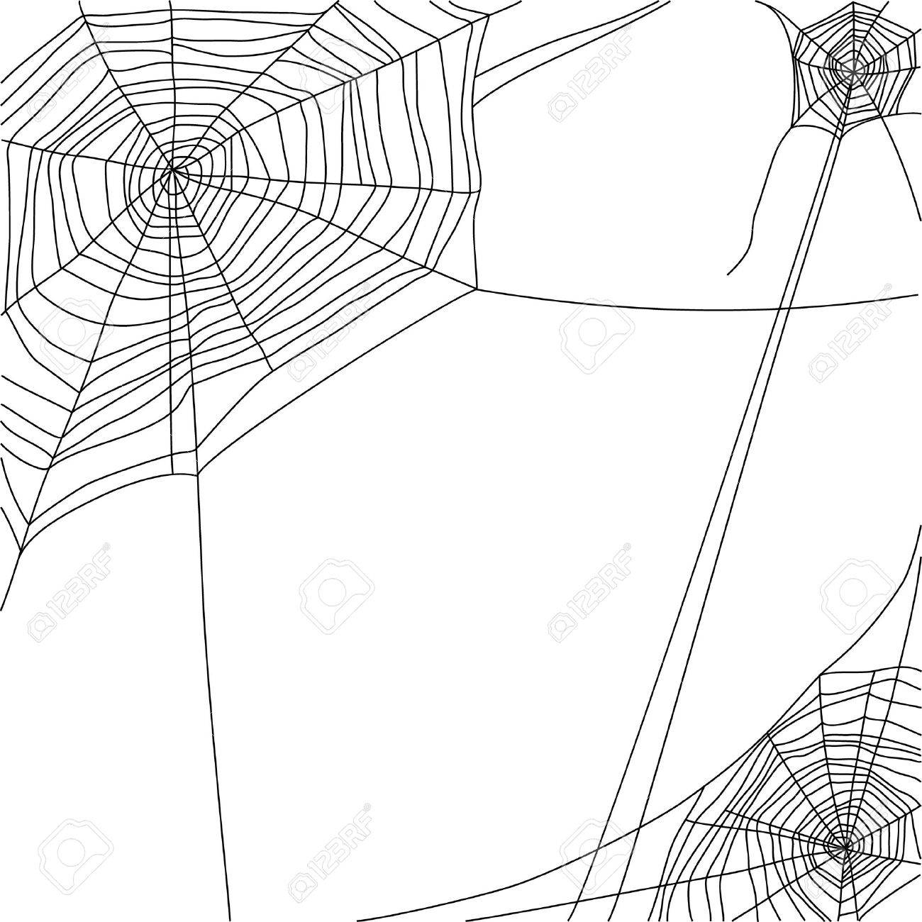 spider web on white background Stock Vector - 20544744
