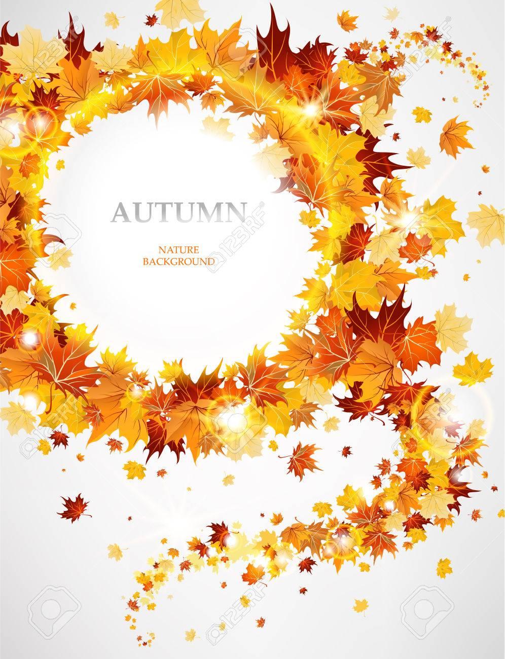 resume de fond avec des feuilles d automne avec espace pour le - Resume De Science 3as Algerie
