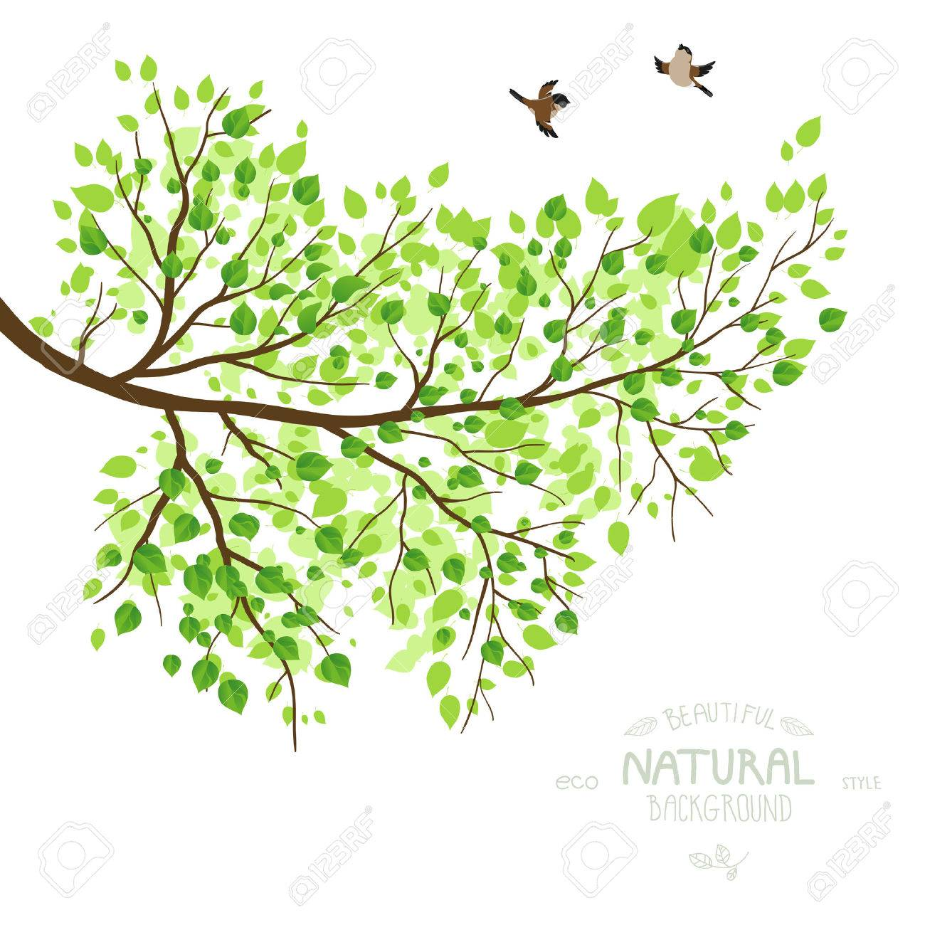 tree branch with leaves vector. spring branch with green leaves. vector illustration. place for text. stock - tree leaves