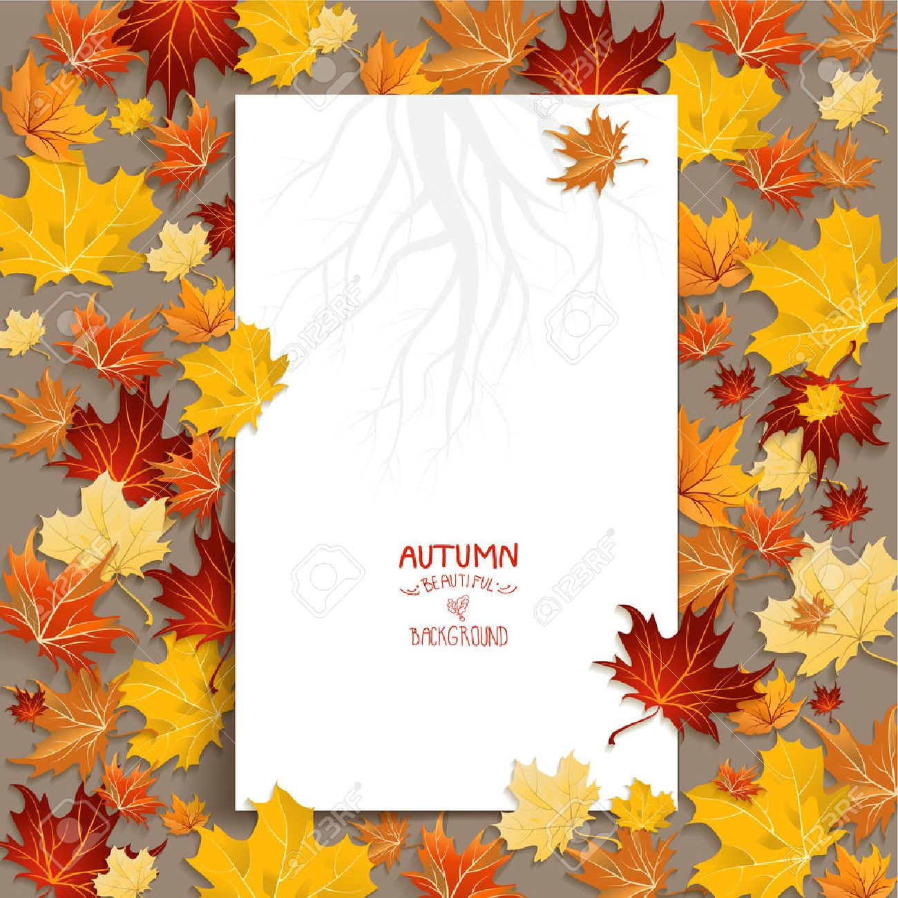 White blank with autumn maple leaves. Copy space - 32770376