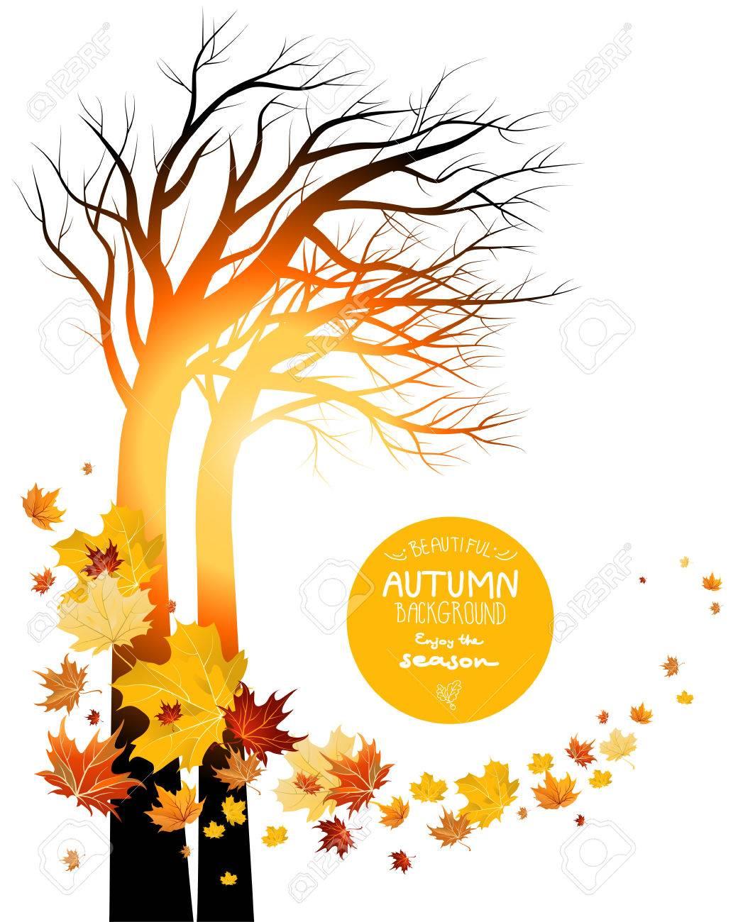 秋の紅葉と木のシルエット。日の出や日没。スペースをコピー