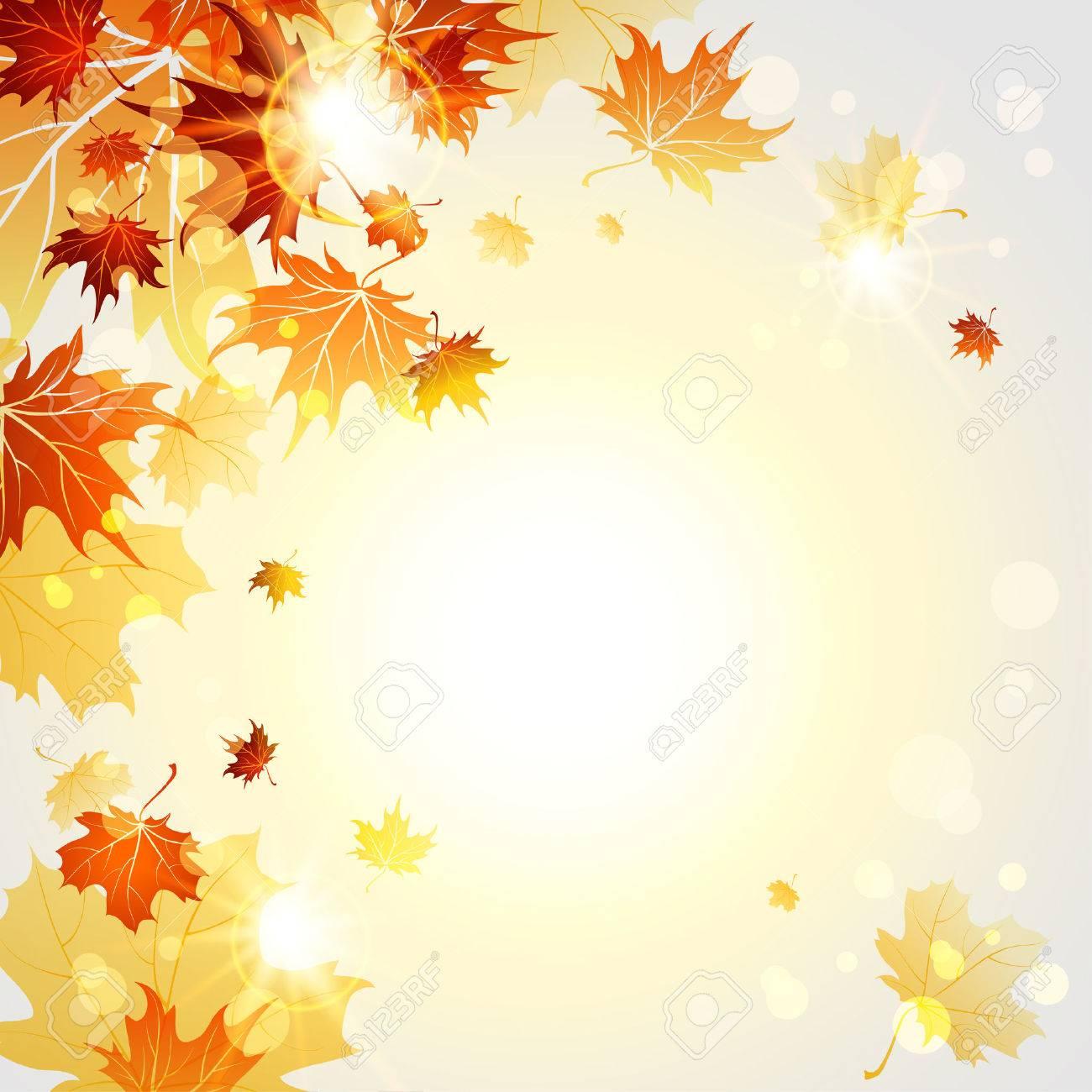 Fall maple leaves on sunny light backgrund. Vector illustration - 32770402