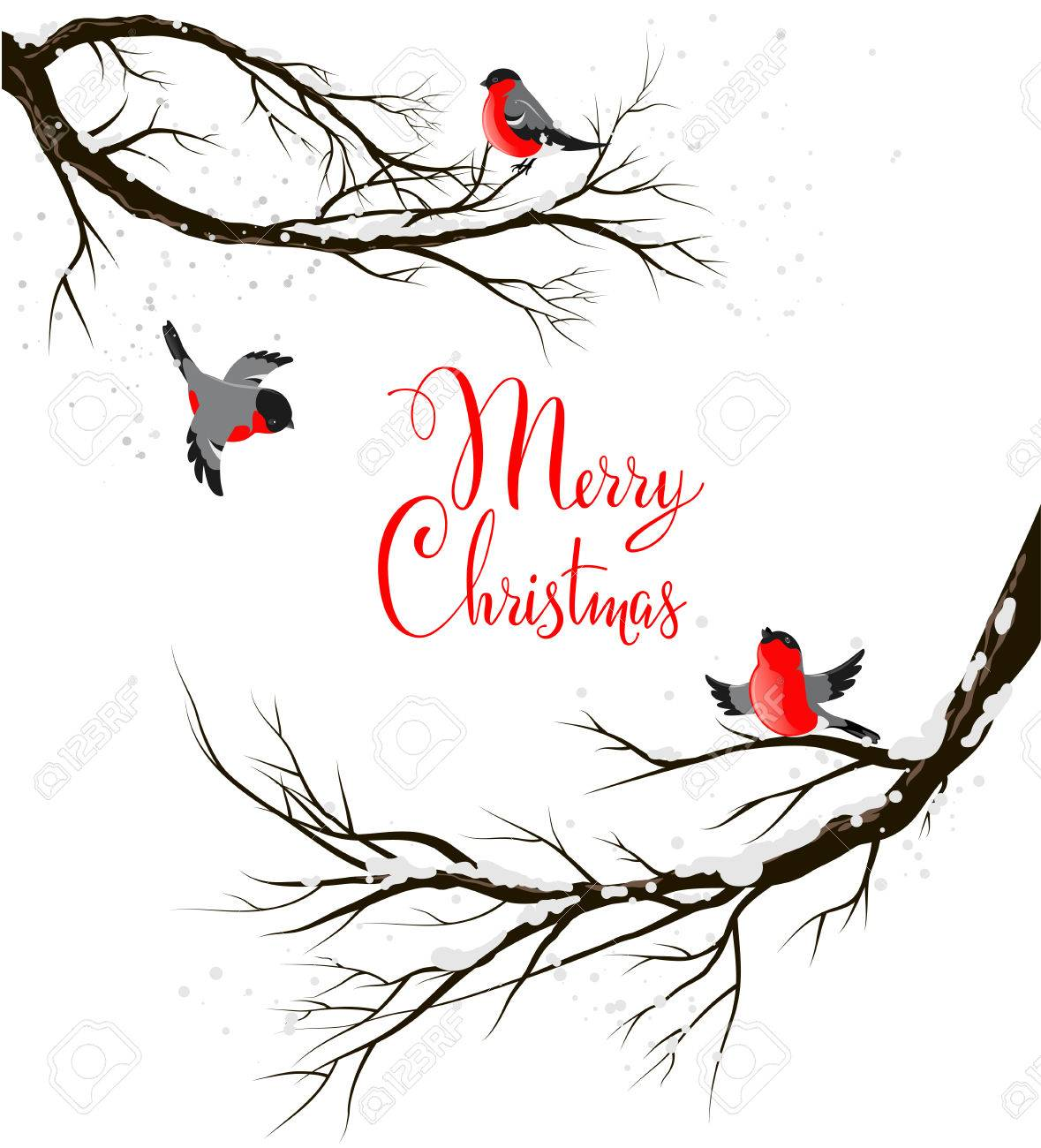 Winter birds on branches. Seasonal backgriund with copy space. - 33461101