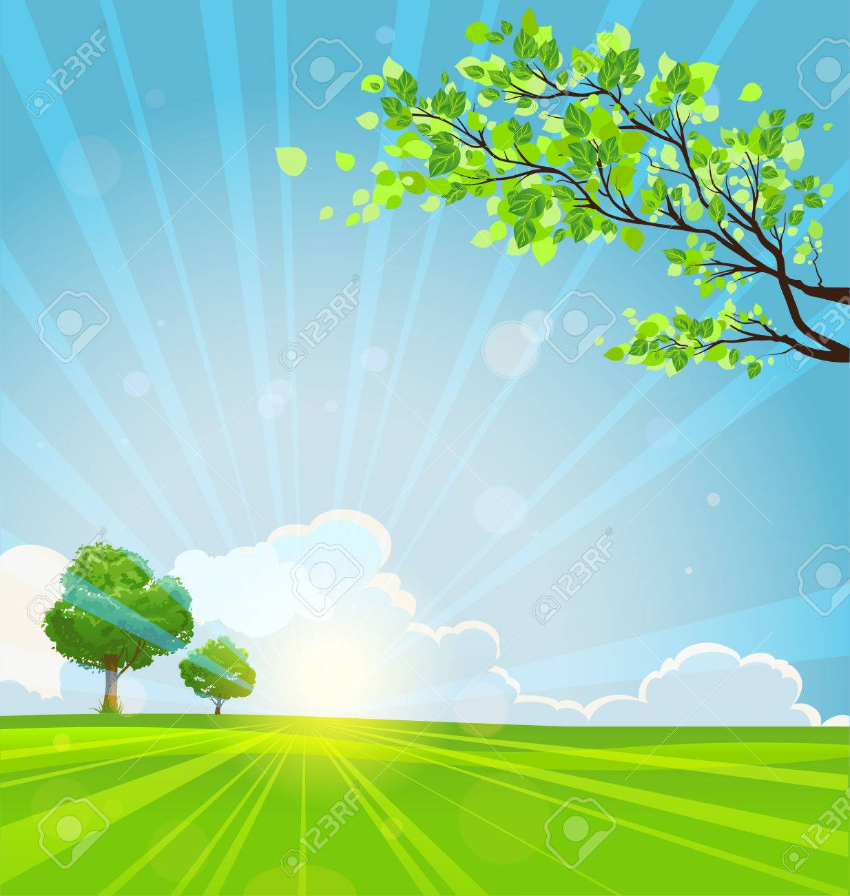 Summer background with trees and sunbeams. Copy space - 36401046