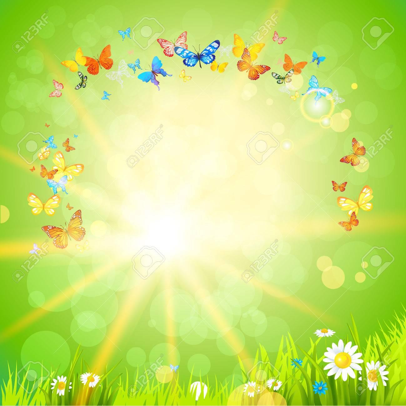 Vettoriale Estate Sfondo Eco Con I Fiori Il Sole E Le Farfalle