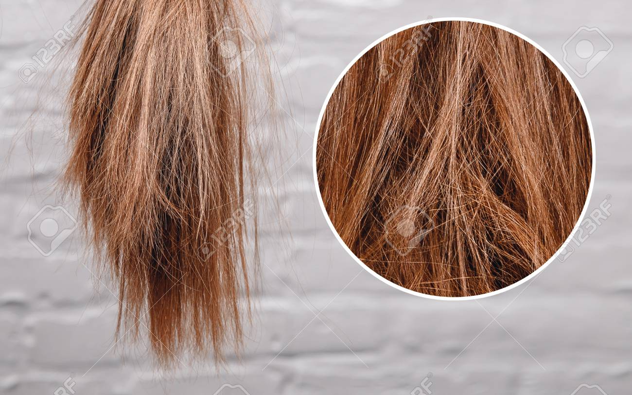 Brittle dull hair, damaged root structure female gray background. - 115612358