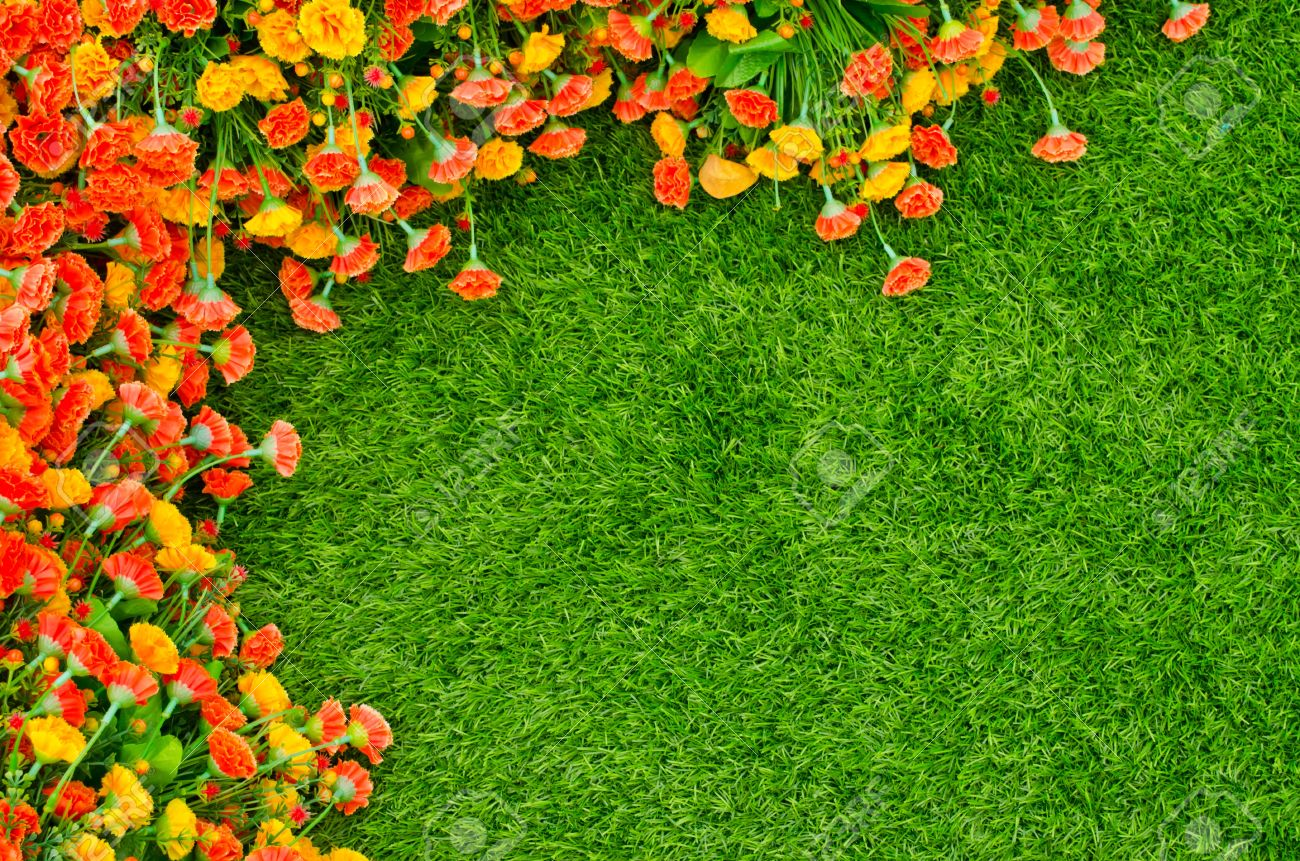 Artificial Grass Field And Flowers Top View Texture Stock Photo