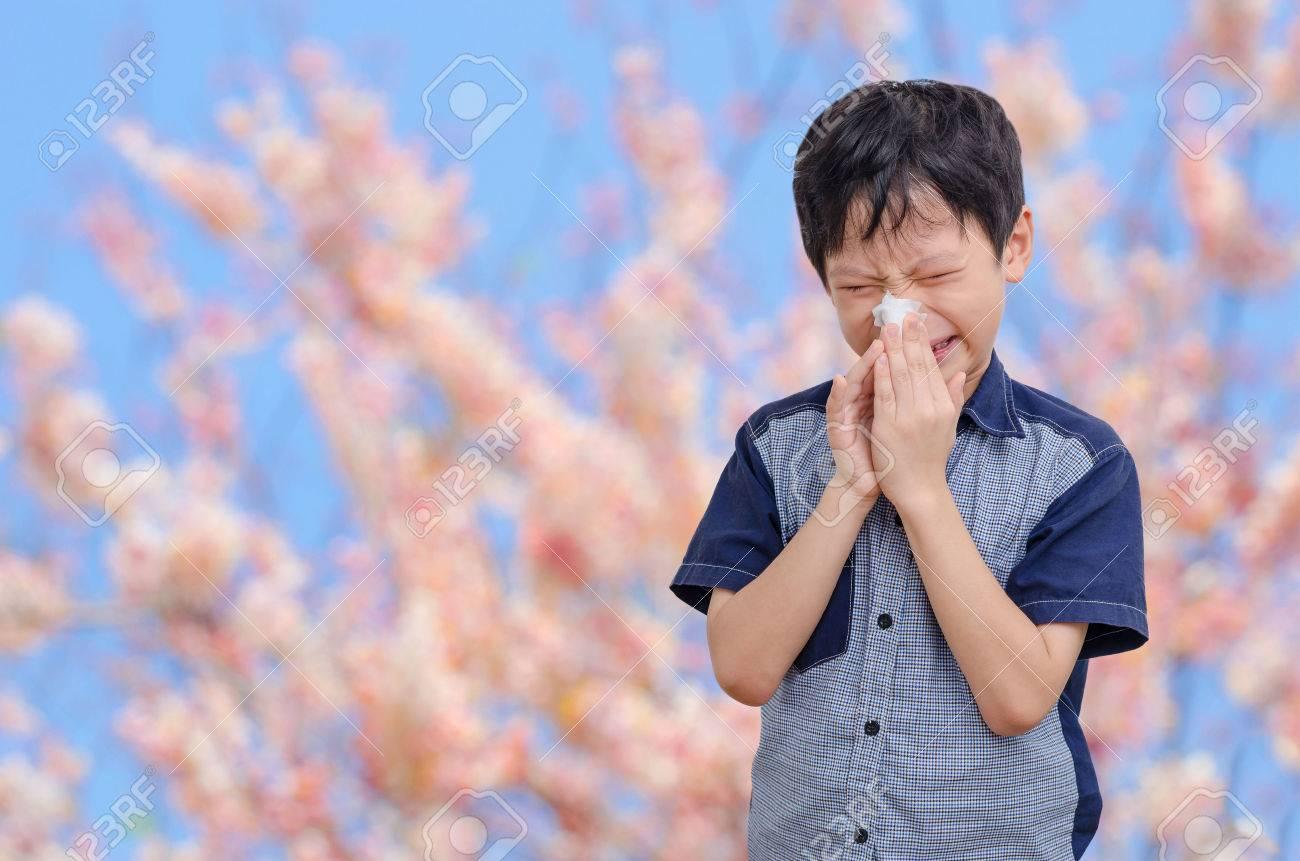 Little Asian boy has allergies from flower pollen Stock Photo - 50494094
