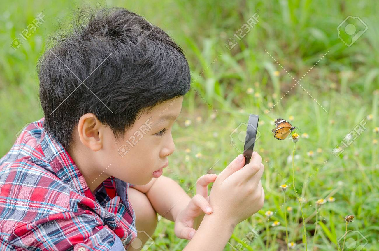 Young asian boy using magnifying glass to observing butterfly in garden - 62811341