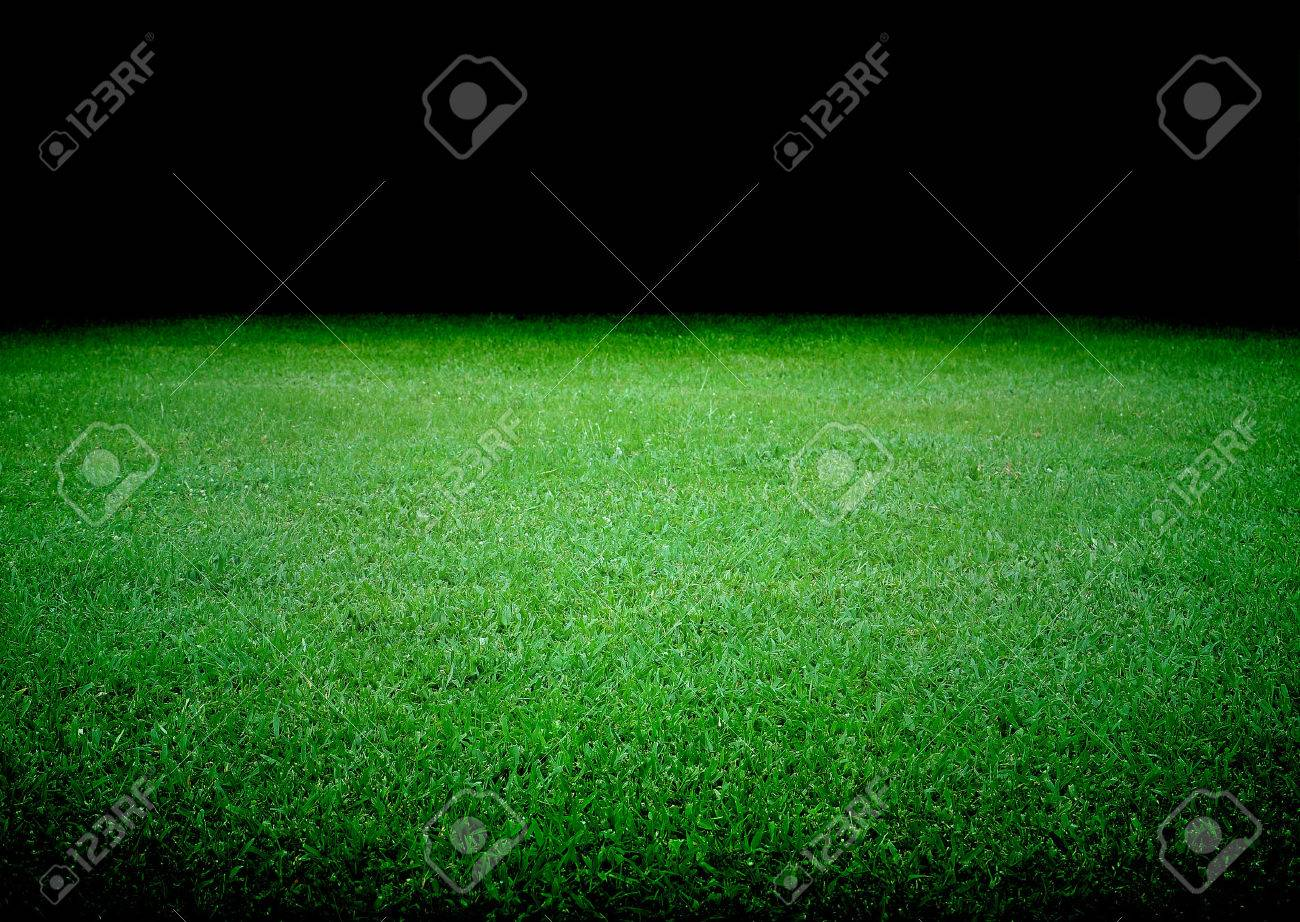 soccer field and the bright lights - 23095982