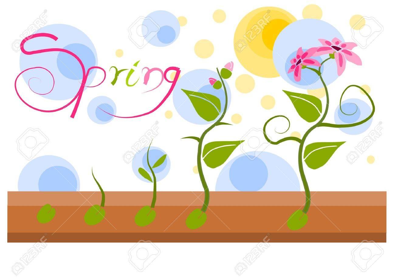 Plant vegatation in spring time Stock Vector - 15309441