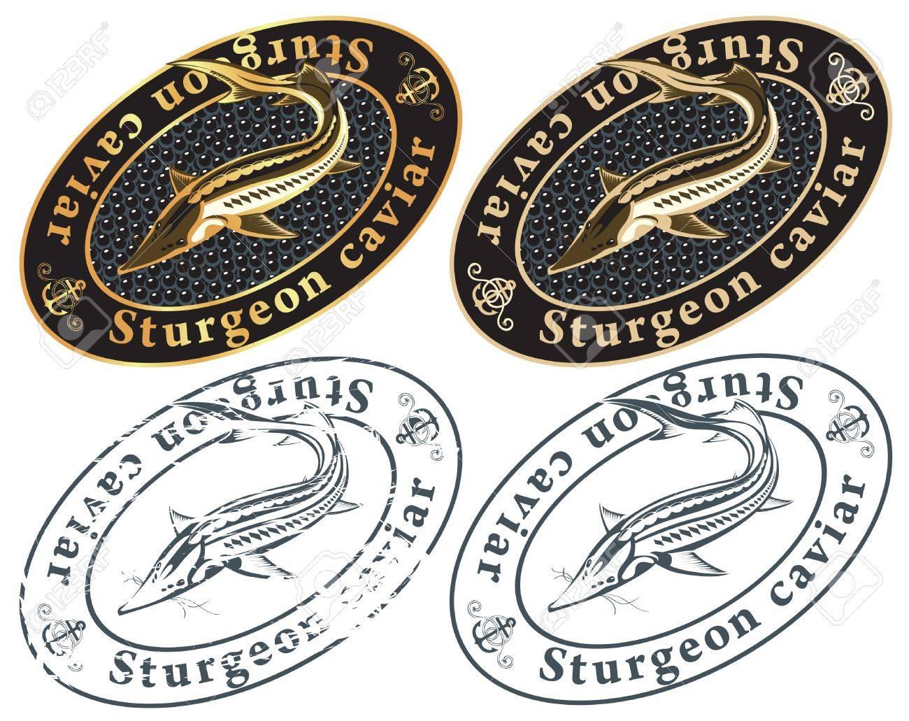 caviar from fish Stock Vector - 11650992