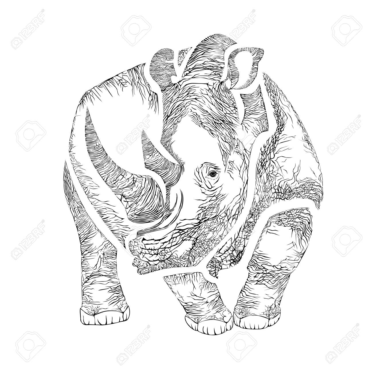 Vector image of a Rhino in the graphic style