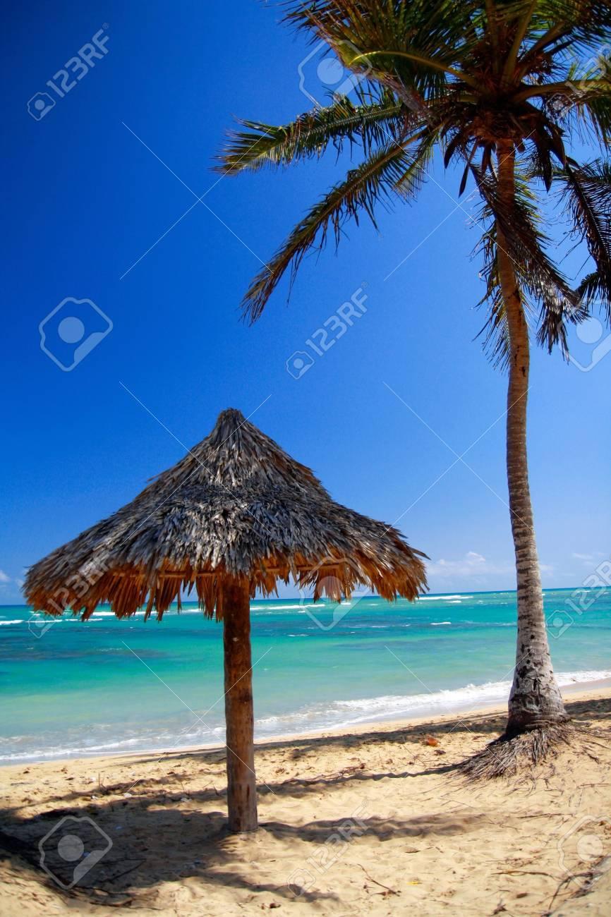 Grass umbrella on beach Stock Photo - 8399013