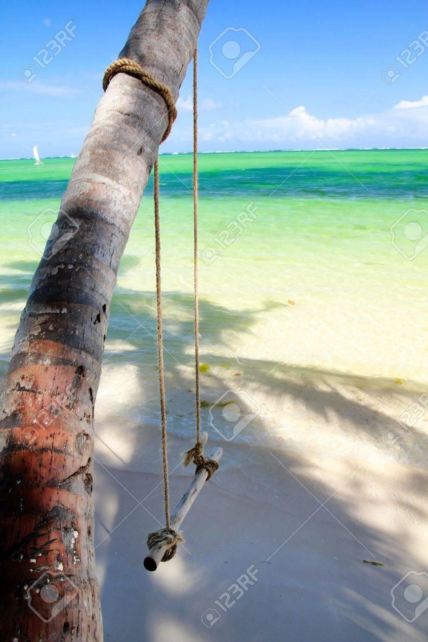 Swing on palm tree near caribbean sea Stock Photo - 9242227