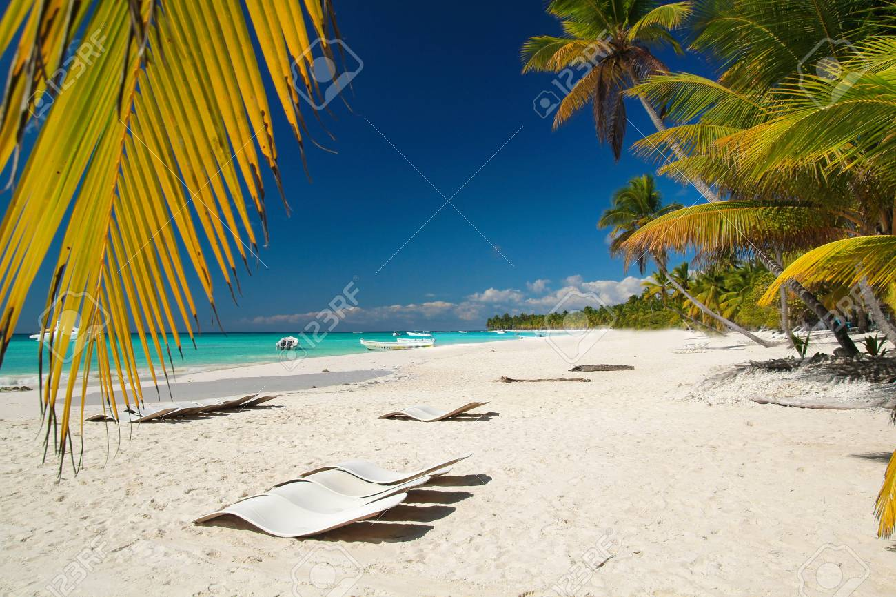 Caribbean beach with chaise longues Stock Photo - 9462794