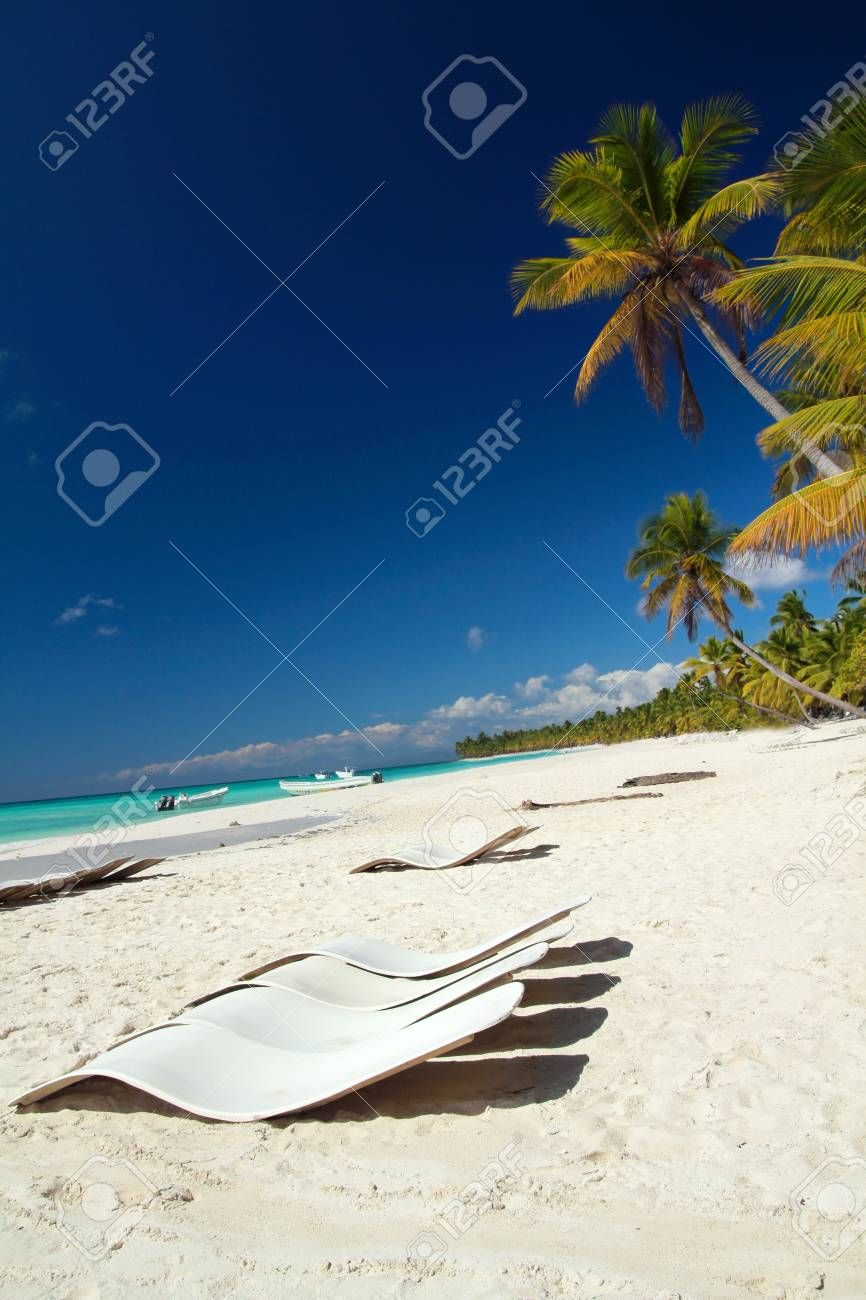 Caribbean beach with palms, paradise Stock Photo - 9766068
