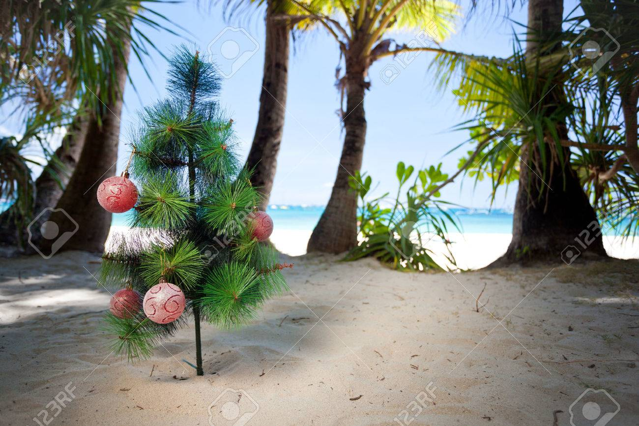 Christmas tree on beach. New year concept. Stock Photo - 22769060