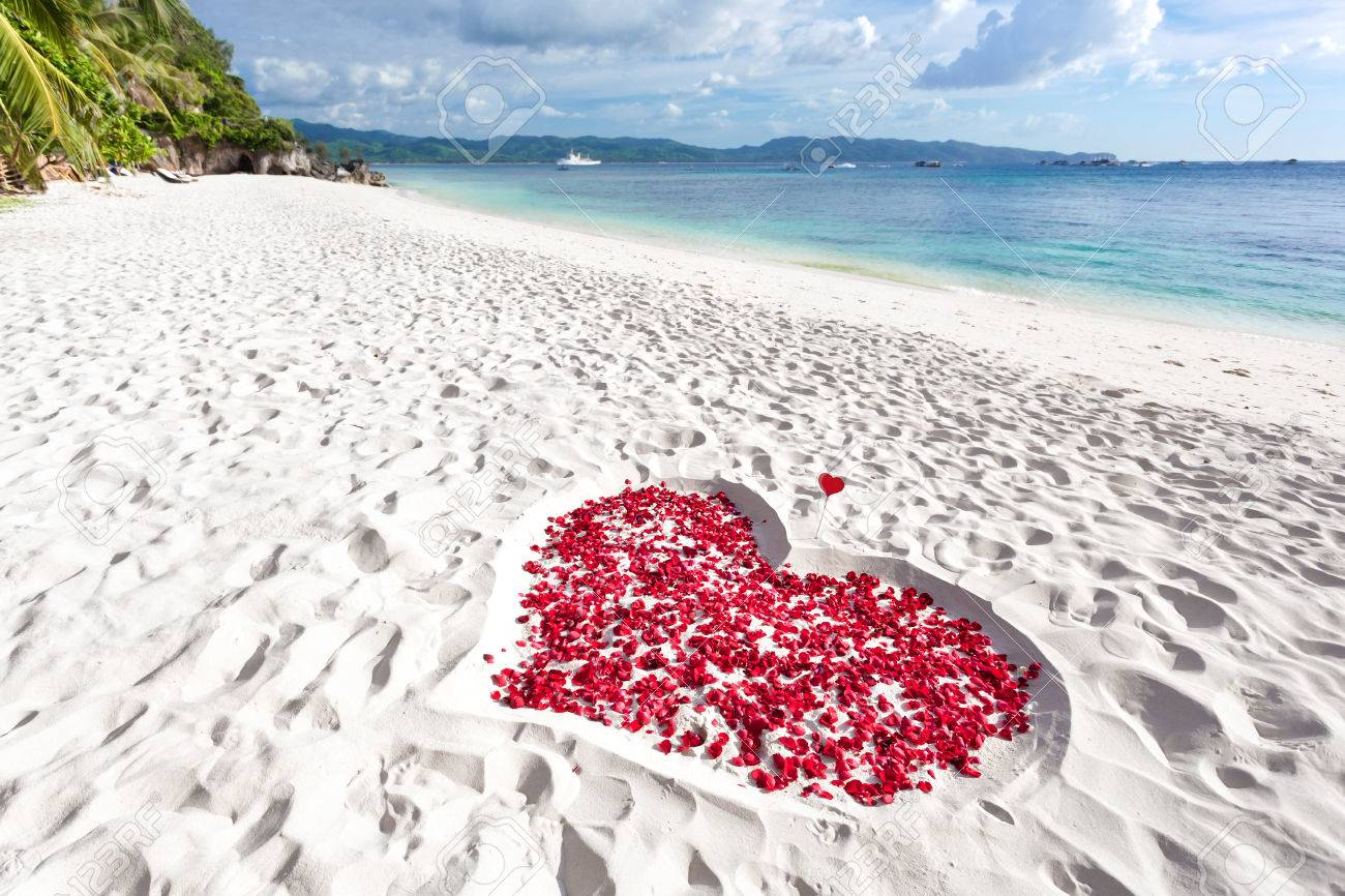 Heart of roses petals on tropical sandy beach. Nobody. Love concept Stock Photo - 25253344