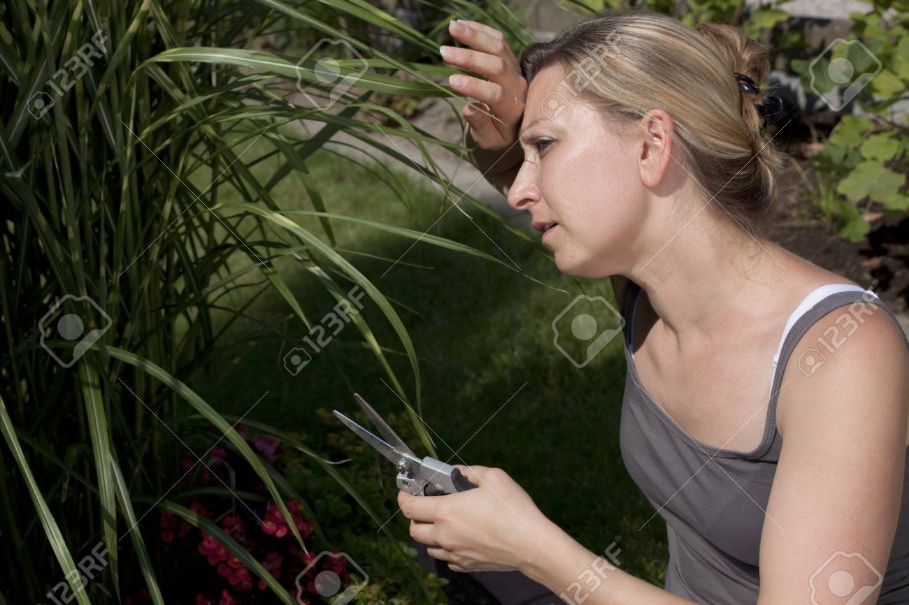 Young woman is working in the garden Stock Photo - 21622041