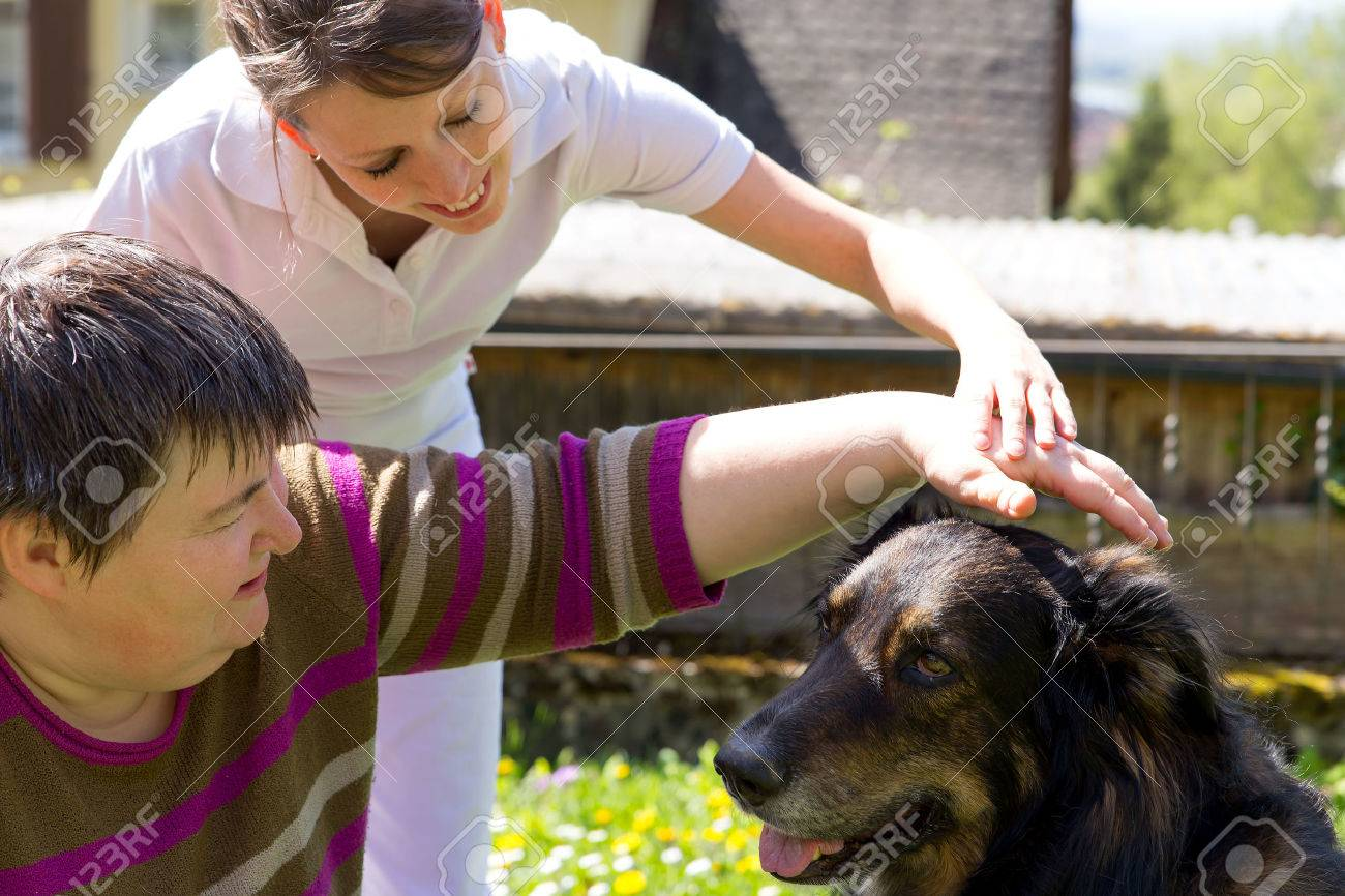 animal assisted therapy with a half breed dog Stock Photo - 27664187