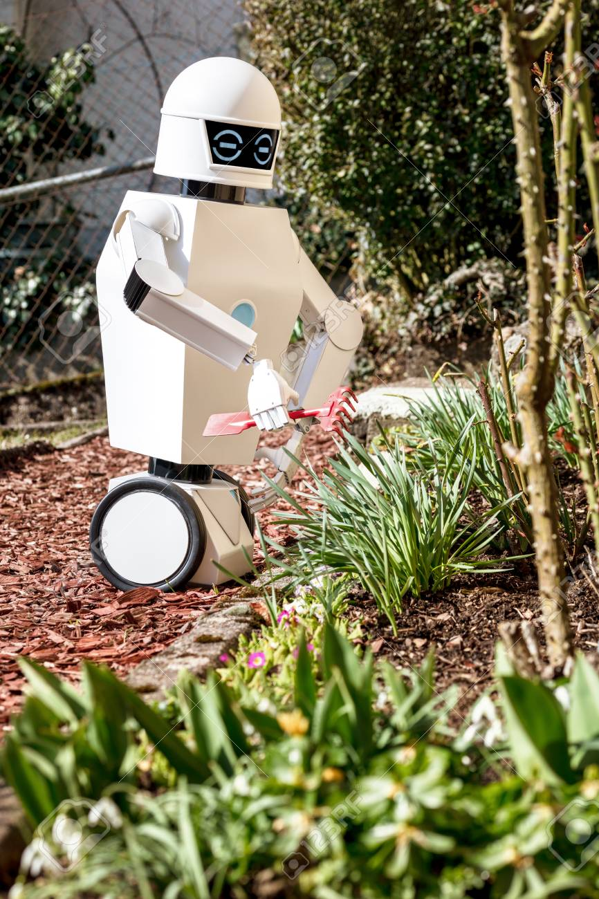 Service Robot Is Gardening With A Garden Tool By Sunlight Stock