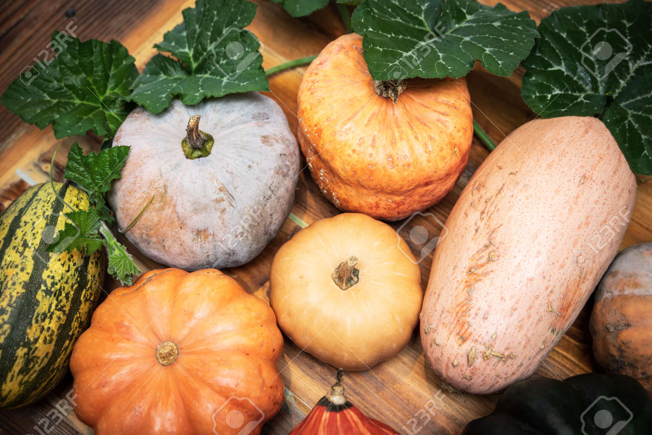 Fresh raw different pumpkins with green leaves on wooden table, cucurbita maxima - 168974721