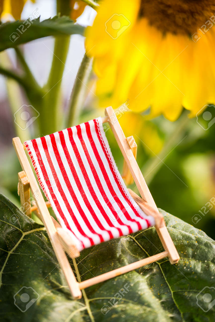 a miniature deckchair red white striped with a sunflower in the background, concept holiday and vacation - 170379733