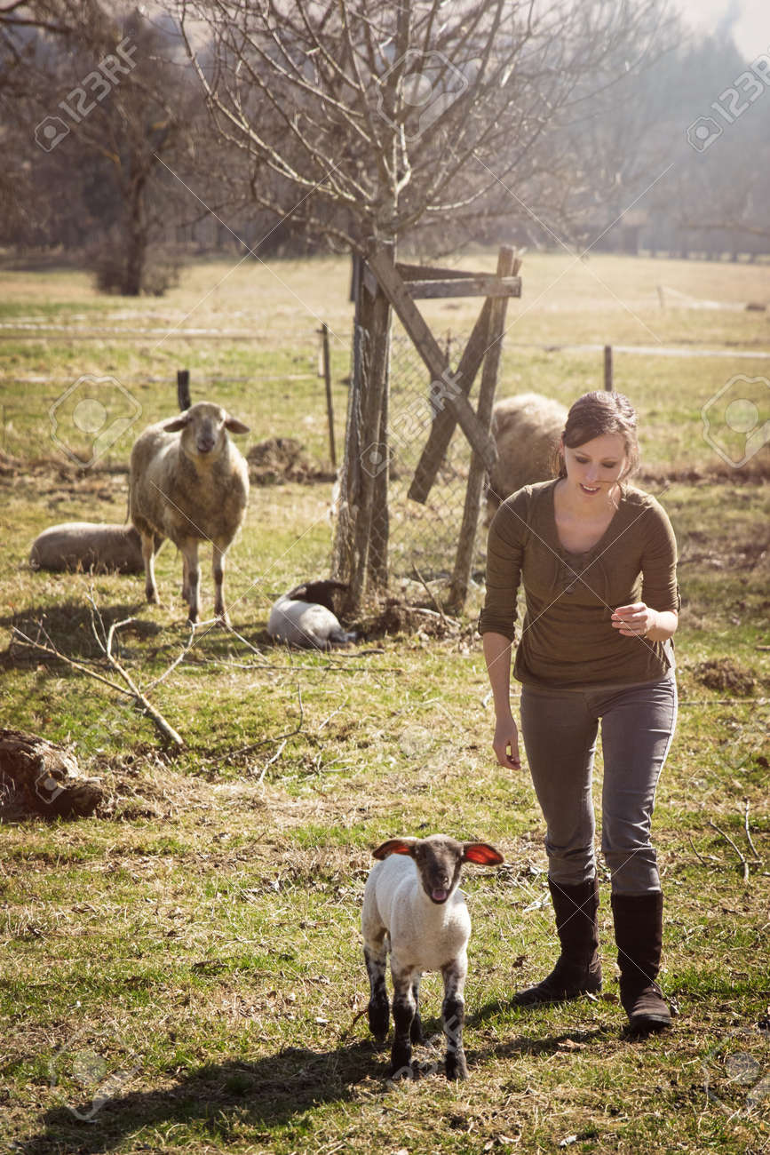 Woman and a lamb, sheep herd in the background, concept farmstead - 170230796