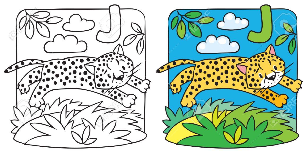 Pequeño Guepardo O Un Libro Para Colorear Jaguar. Alfabeto J ...