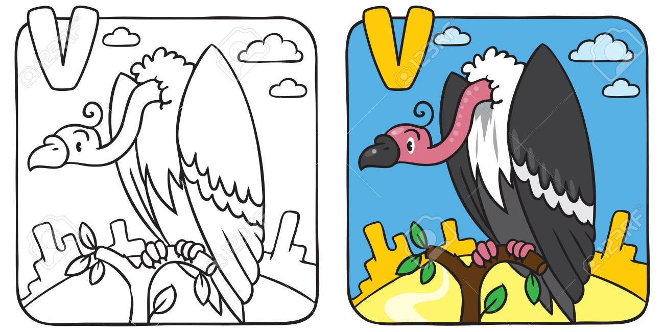 Funny Vulture Coloring Book. Alphabet V Royalty Free Cliparts ...