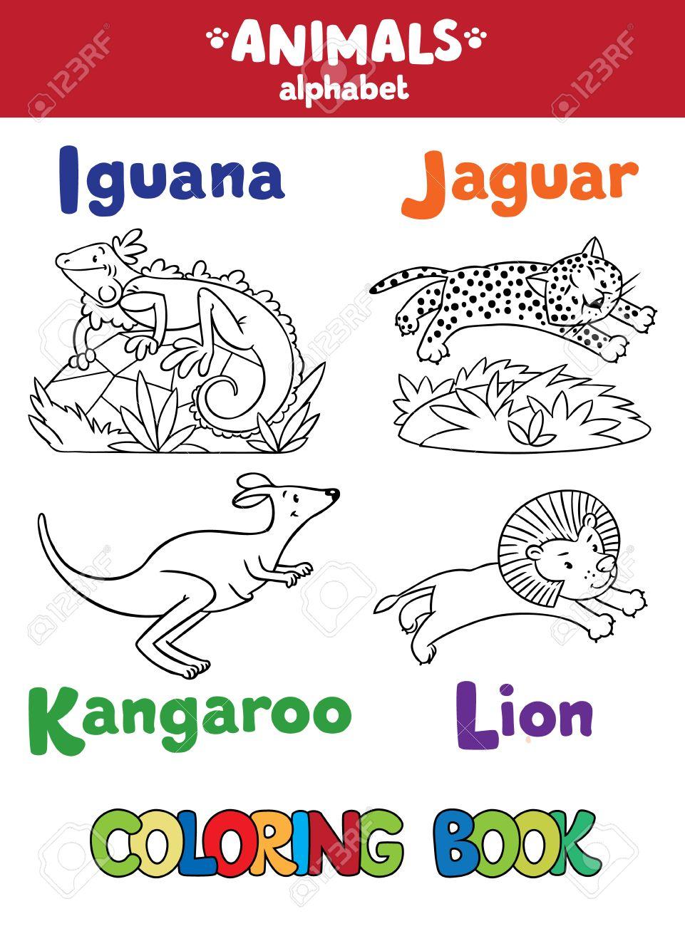 Malbuch Oder Ausmalbild Funny Iguana Jaguar Kanguru Und Lowe