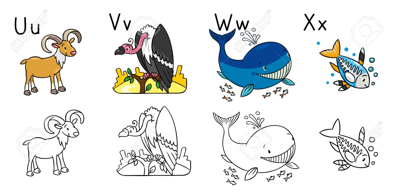 Animals Alphabet Or ABC. Coloring Book Royalty Free Cliparts ...