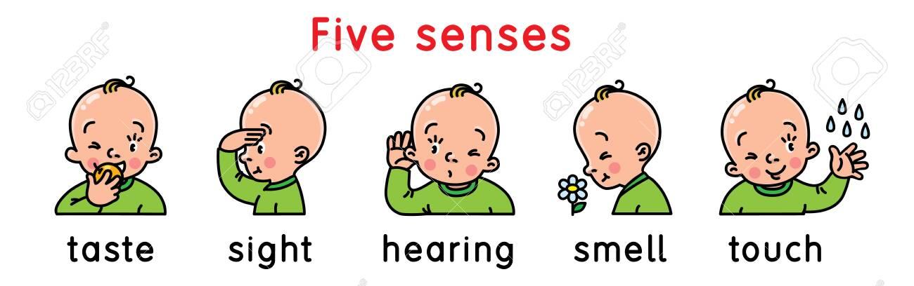 Five senses icon set. - 124468081