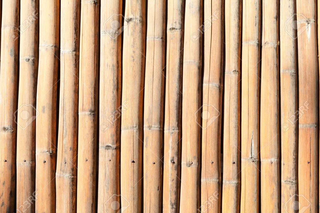 Lines of bamboo fence Stock Photo - 11491000
