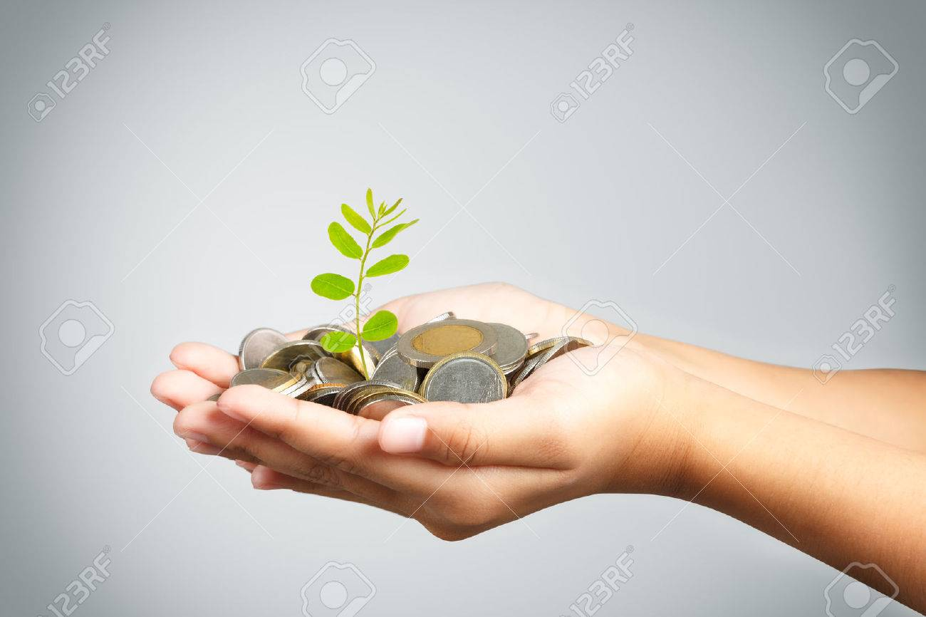 Hand of little girl with tree growing from pile of coins Stock Photo - 22933884