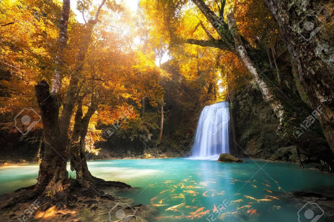 Deep forest Waterfall in Kanchanaburi, Thailand Stock Photo - 24237042