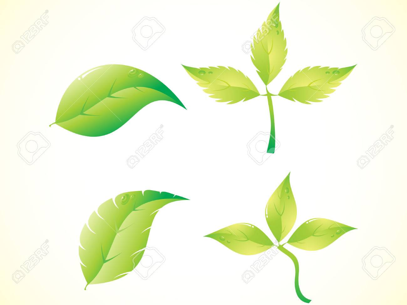abstract beautiful green leaf set illustration Stock Vector - 6795961