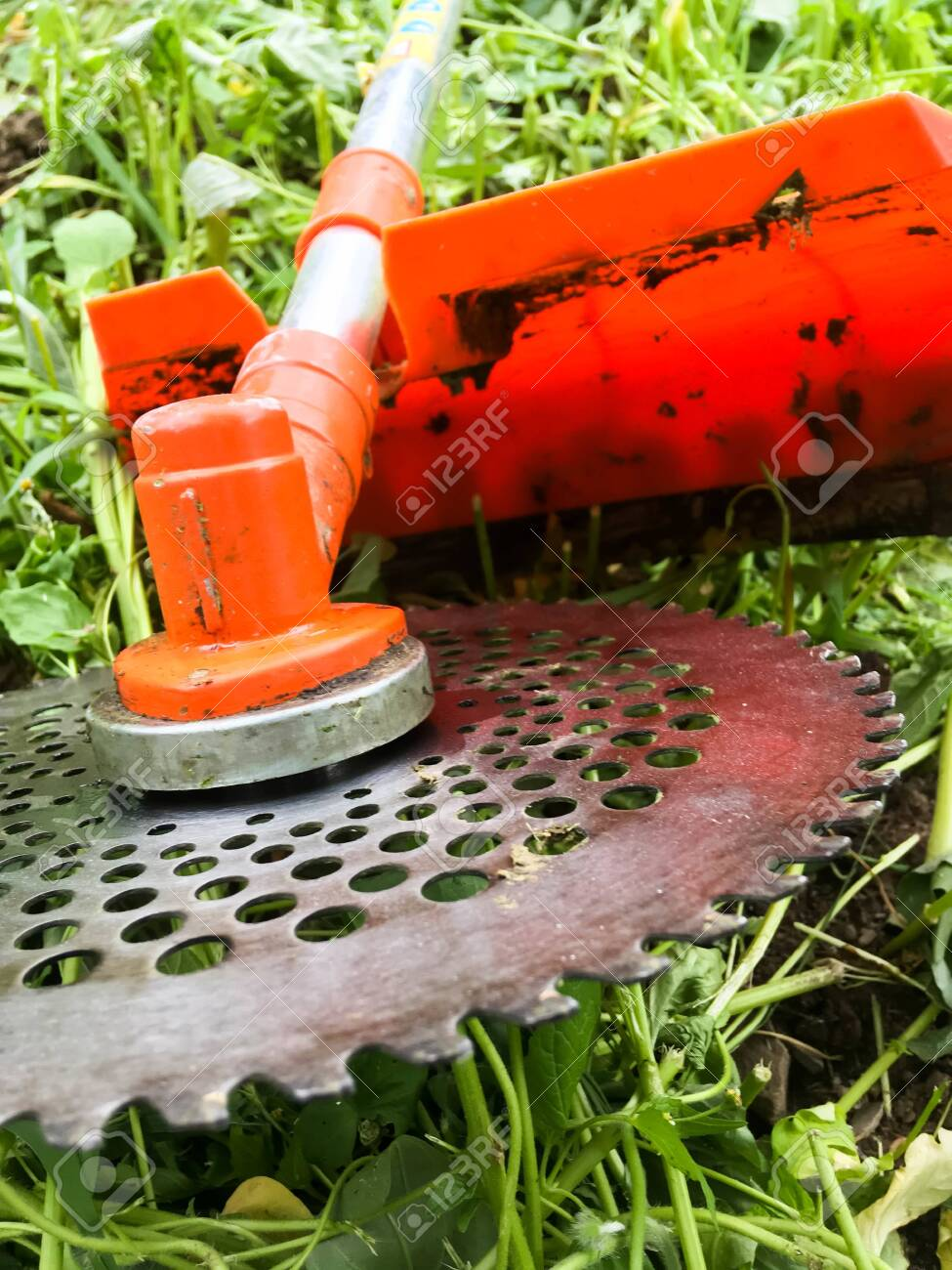 Lawn mower, grass, equipment, mow gardener care work tool - 147697641