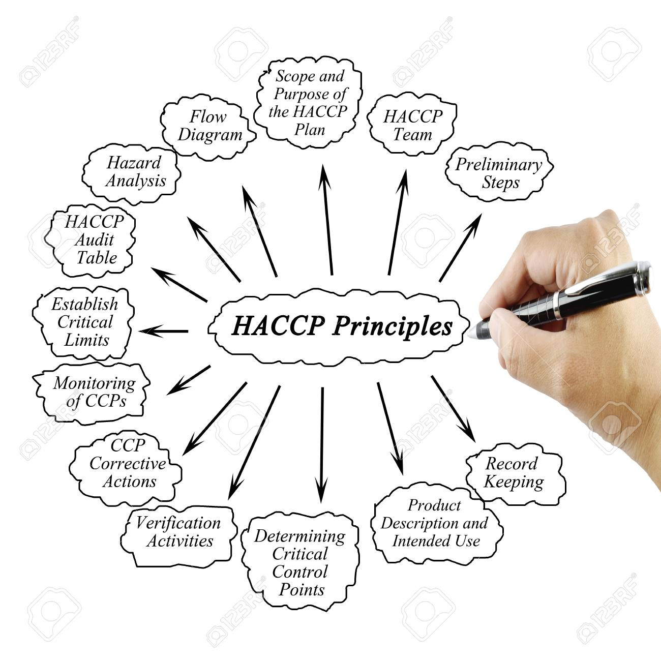 woman hand writing element of haccp principle on white background