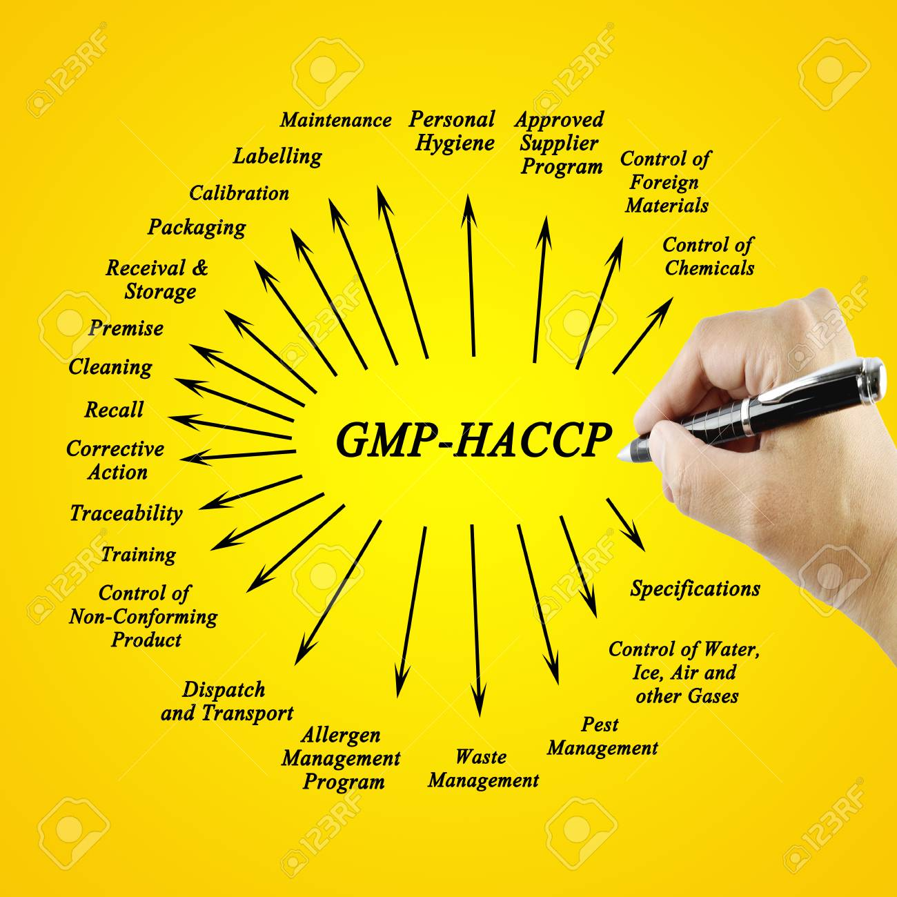 Women hand writing element GMP-HACCP for use in manufacturing