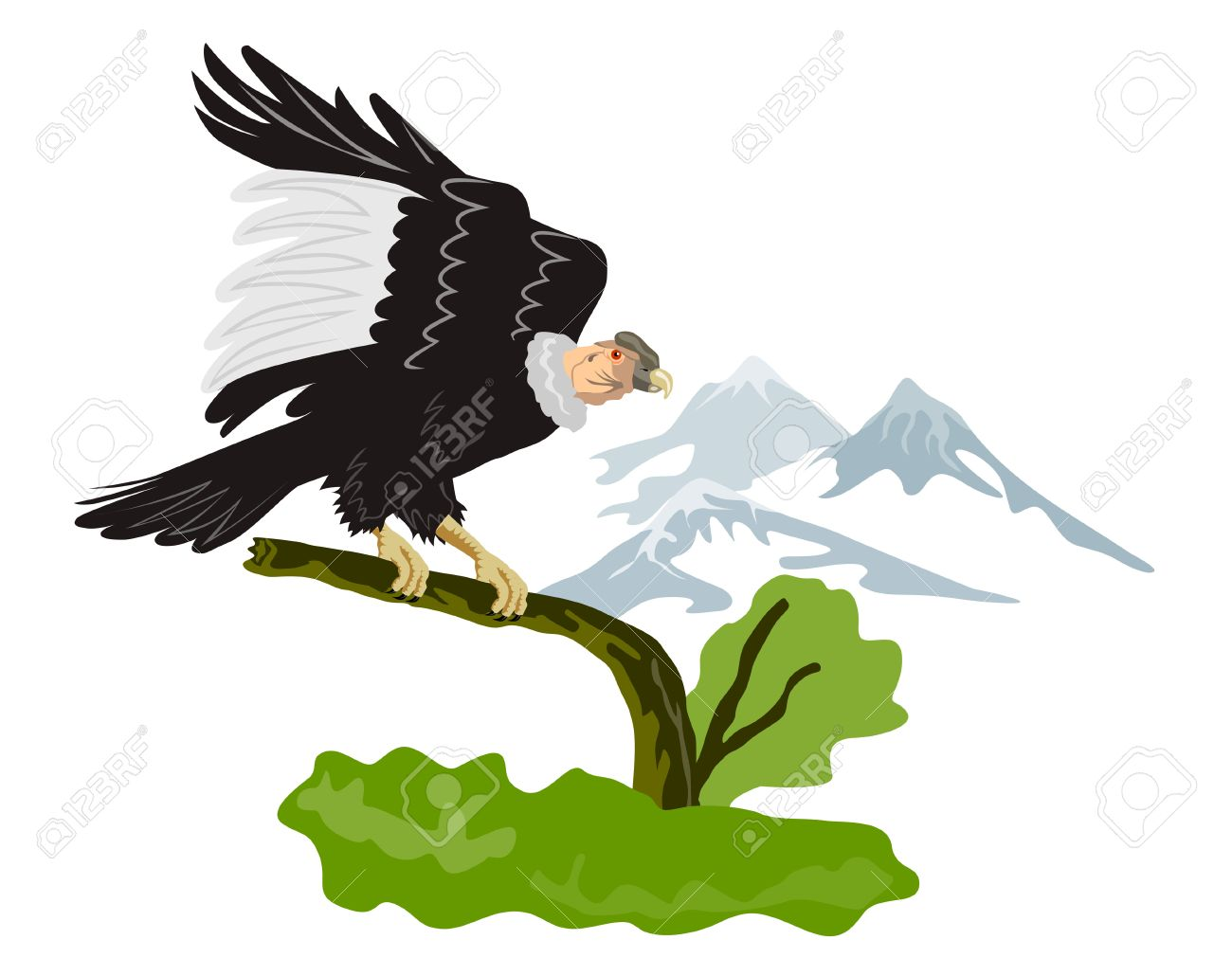 Condor perching on branch with mountains Stock Vector - 1391101