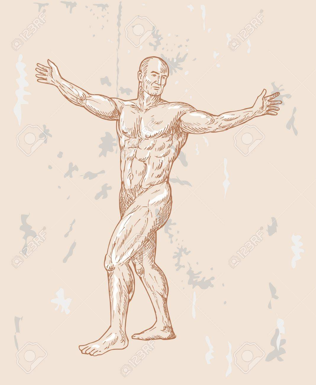 Hand Sketched Illustration Of The Male Human Anatomy Done In.. Stock ...