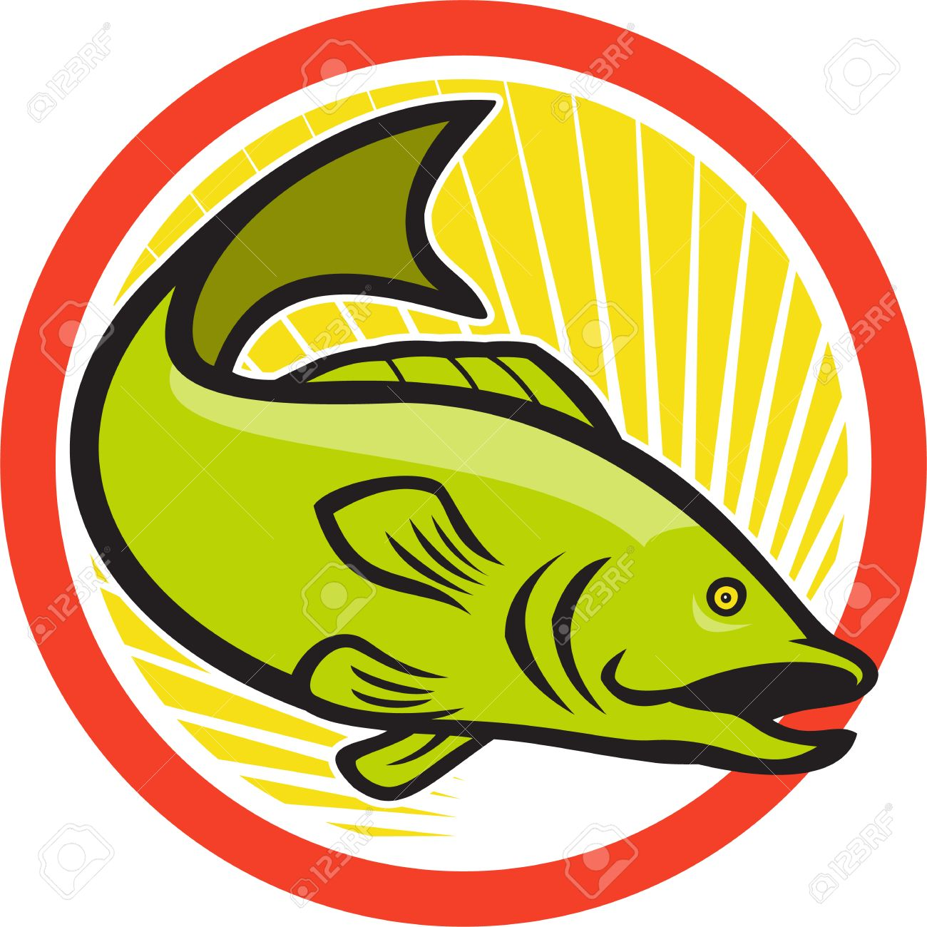 Freshwater fish jumping - Bass Fish Jumping Illustration Of A Largemouth Bass Fish Jumping Done In Cartoon Style On