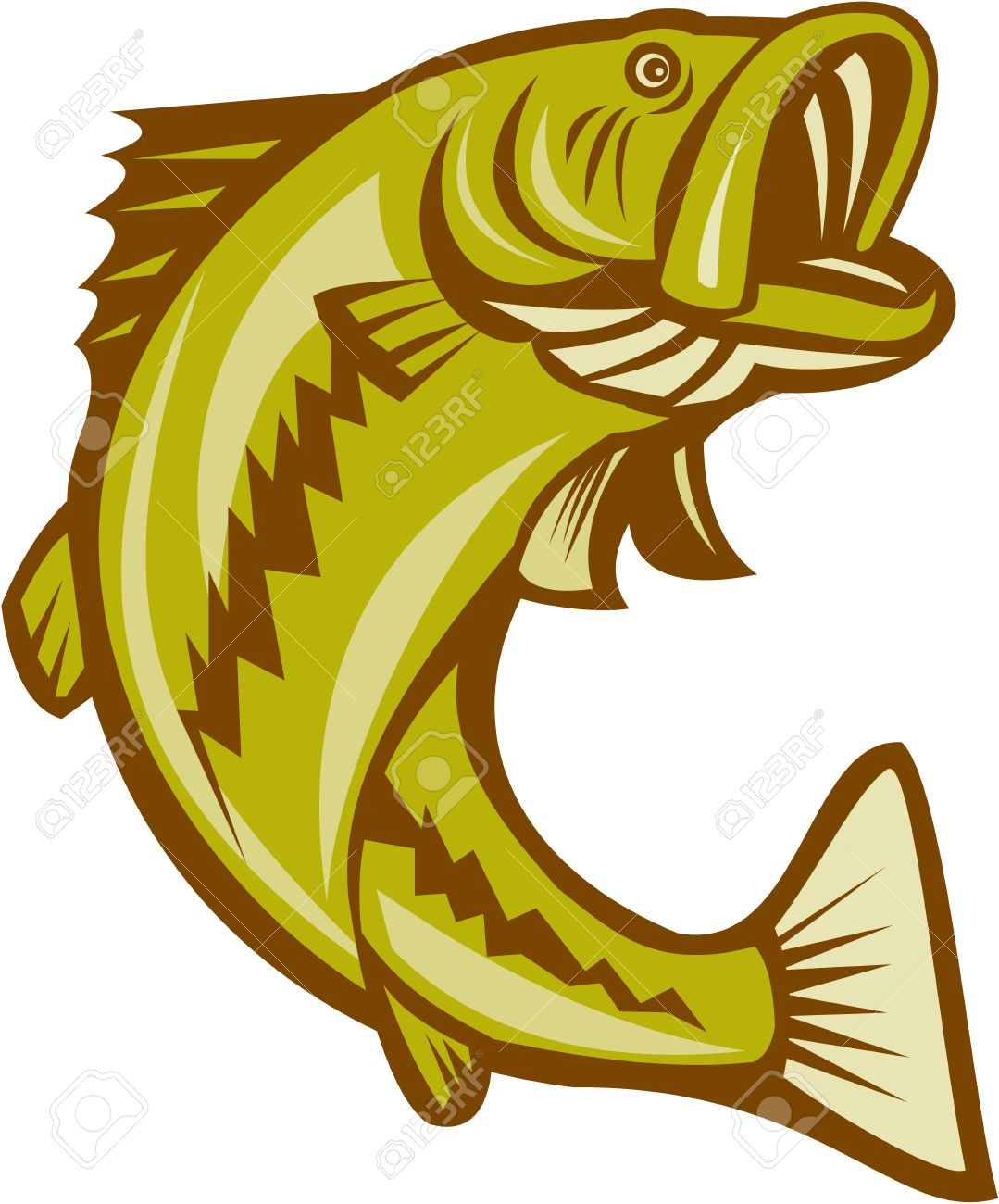 Illustration of a largemouth bass fish jumping done in cartoon style on isolated white background. - 31296796